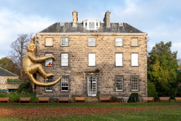 The Golden Monkey by Lisa Roet at Climate House